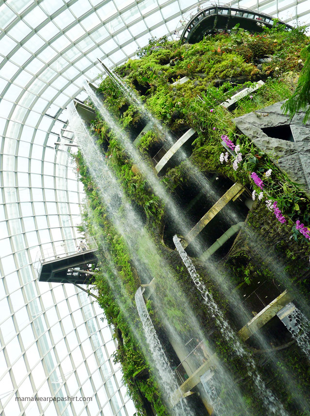 waterfall at the cloud forest dome