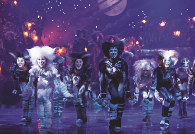 CATS the musical, a different kind of animal