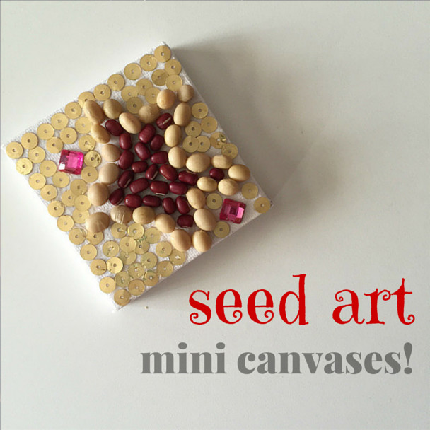 seed artmini canvases!